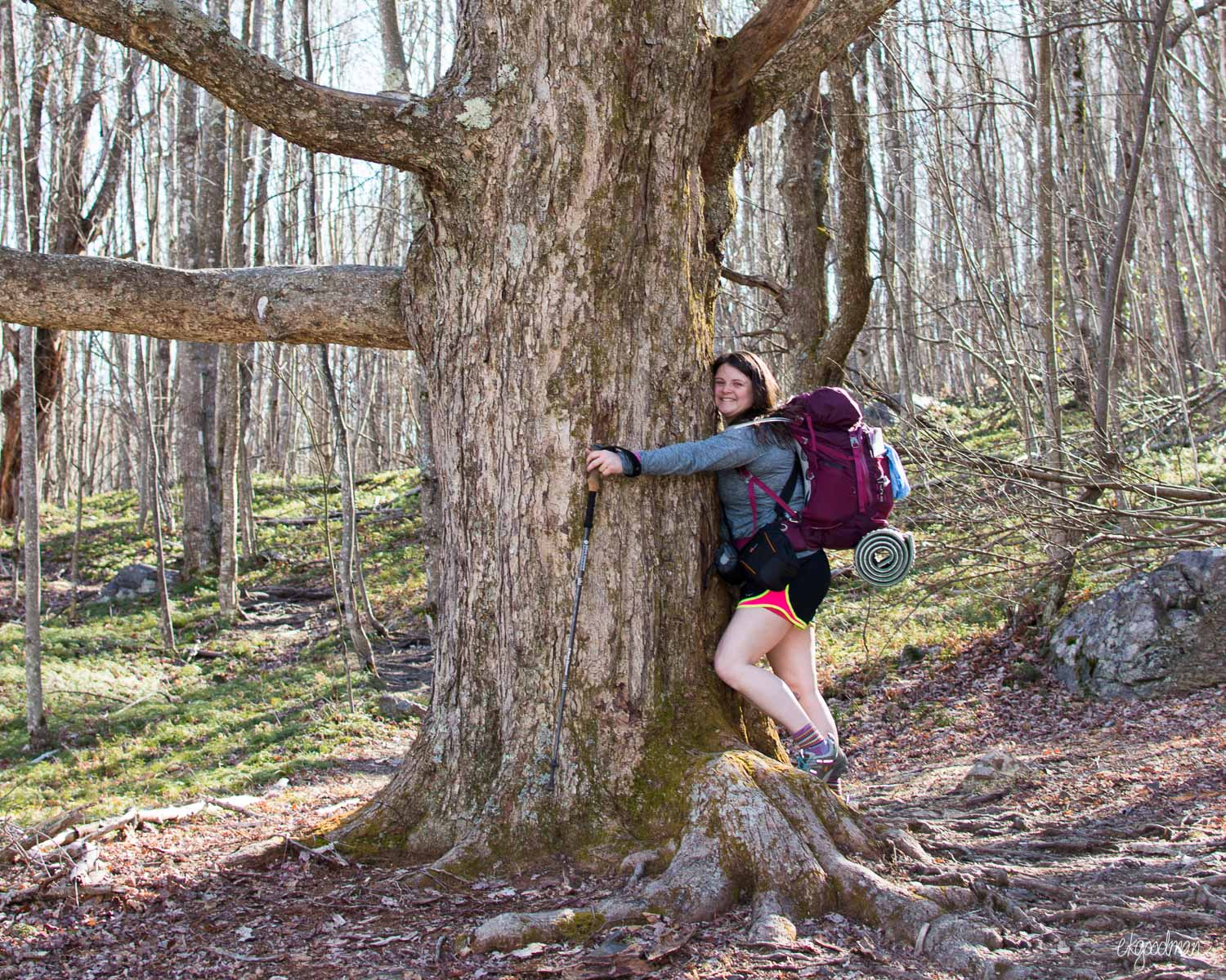 Backpacking the AT - Not This Spring www.therestlesswild.com