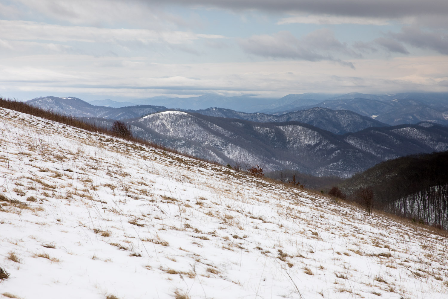A view from halfway up Max Patch