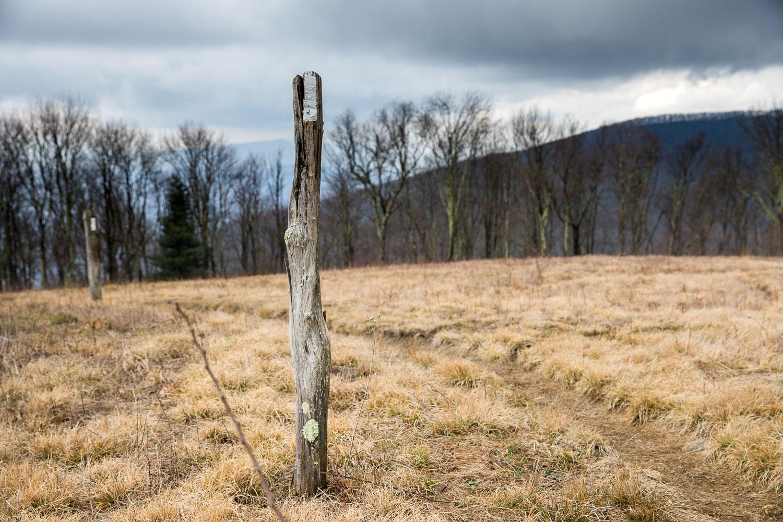 Walnut Mountain on Appalachian Trail