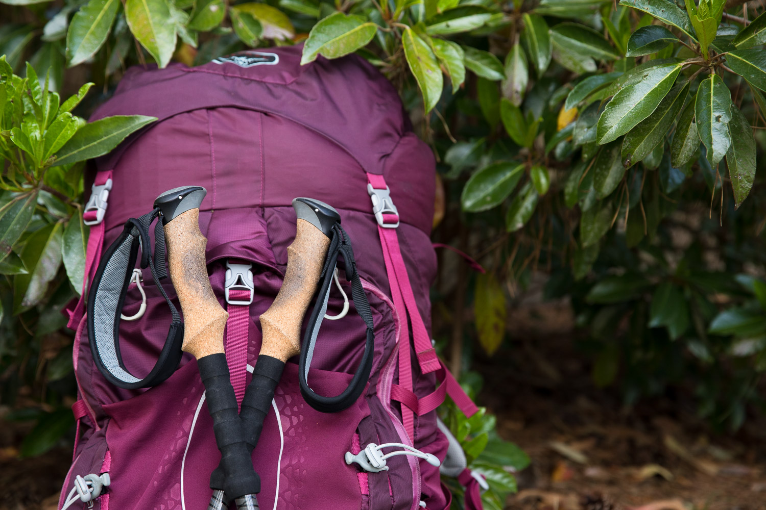 Backpacking tips and tricks and lessons learned from a newbie