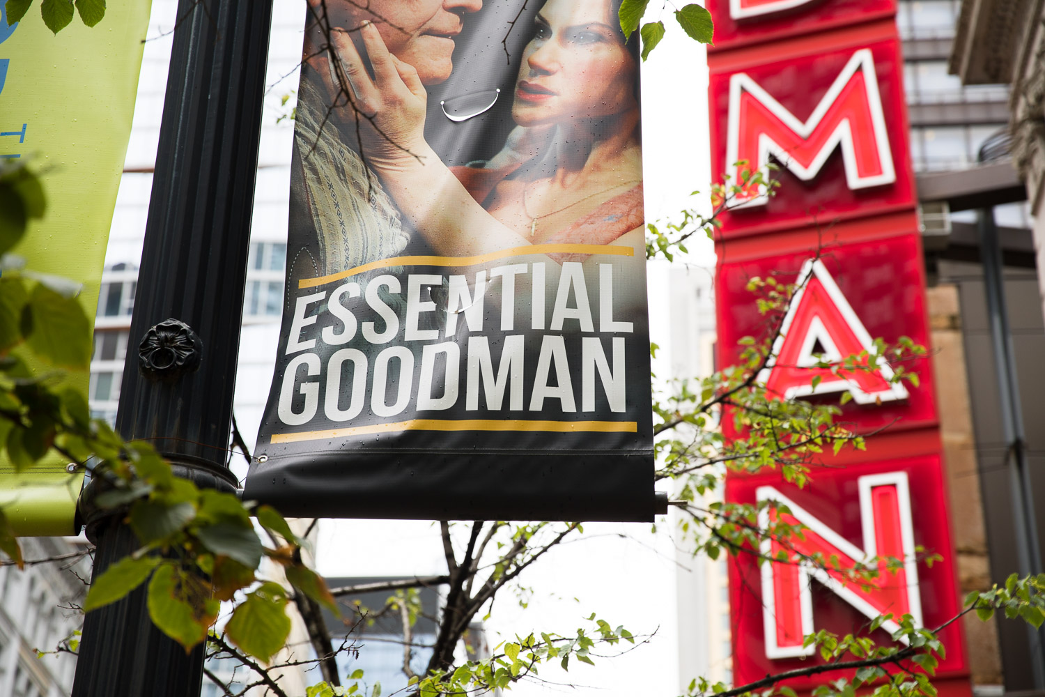 """Chicago's """"Theatre Goodman"""" - well duh I had to take the photo."""