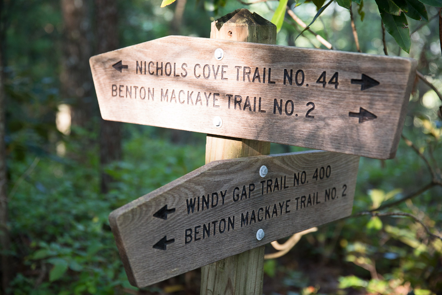 """In a wilderness area all you get are signs at trail intersections. No trail blazes. No signs along the way. No """"X Miles to Sight A"""" markers. Nothing. Just intersections like this."""
