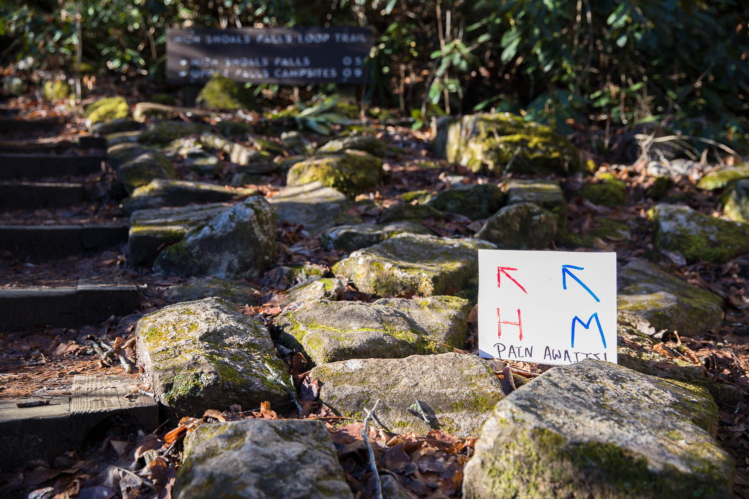 """""""Pain awaits!"""" A sign directing runners along the trail marathon and half marathon course."""