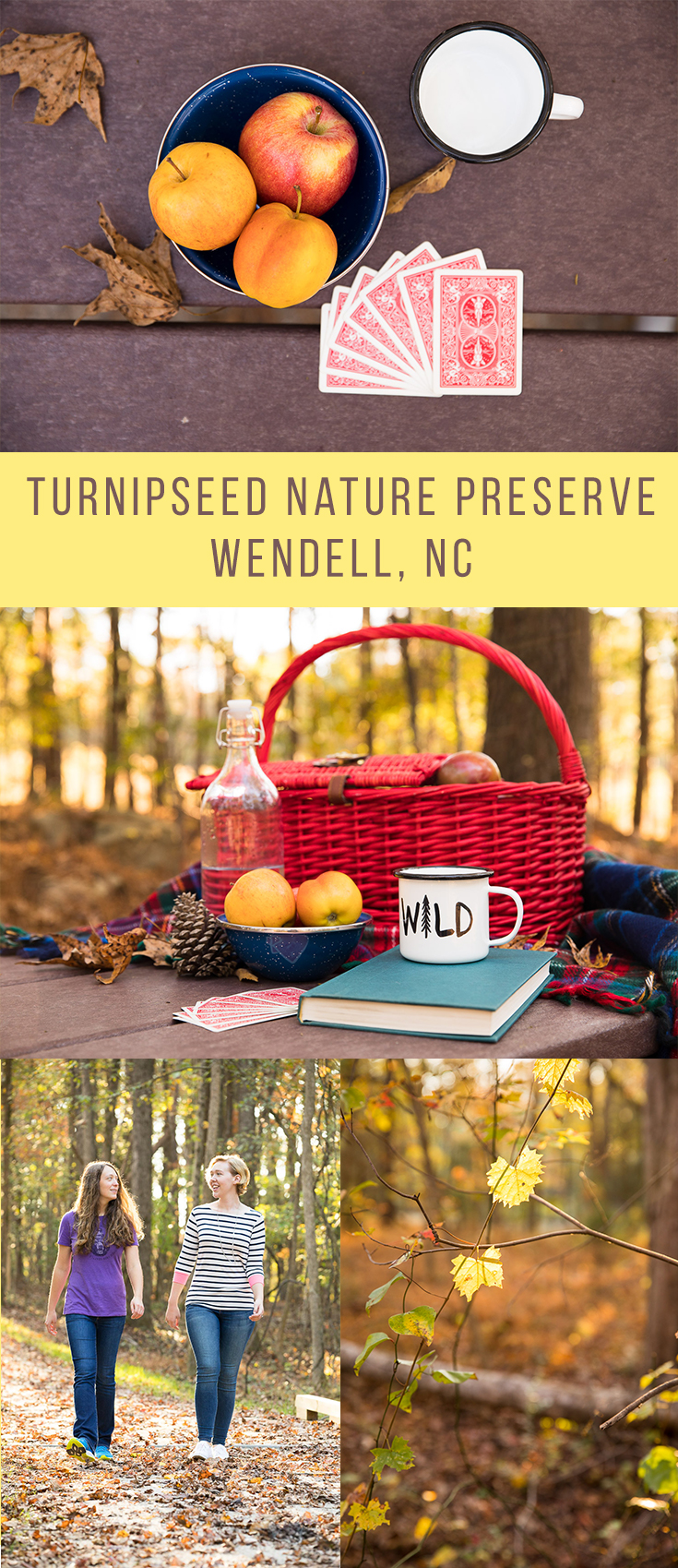 Wake County expanded its park system in 2017 to include Turnipseed Nature Preserve in Wendell, NC. With 265 acres of land preserved, it's an important wetland area and has historical farming significance as well as geological significance as a point where the piedmont and coastal plains of North Carolina meet. The park had its soft opening in fall 2017 and construction is on-going as they build additional trails through the preserve.