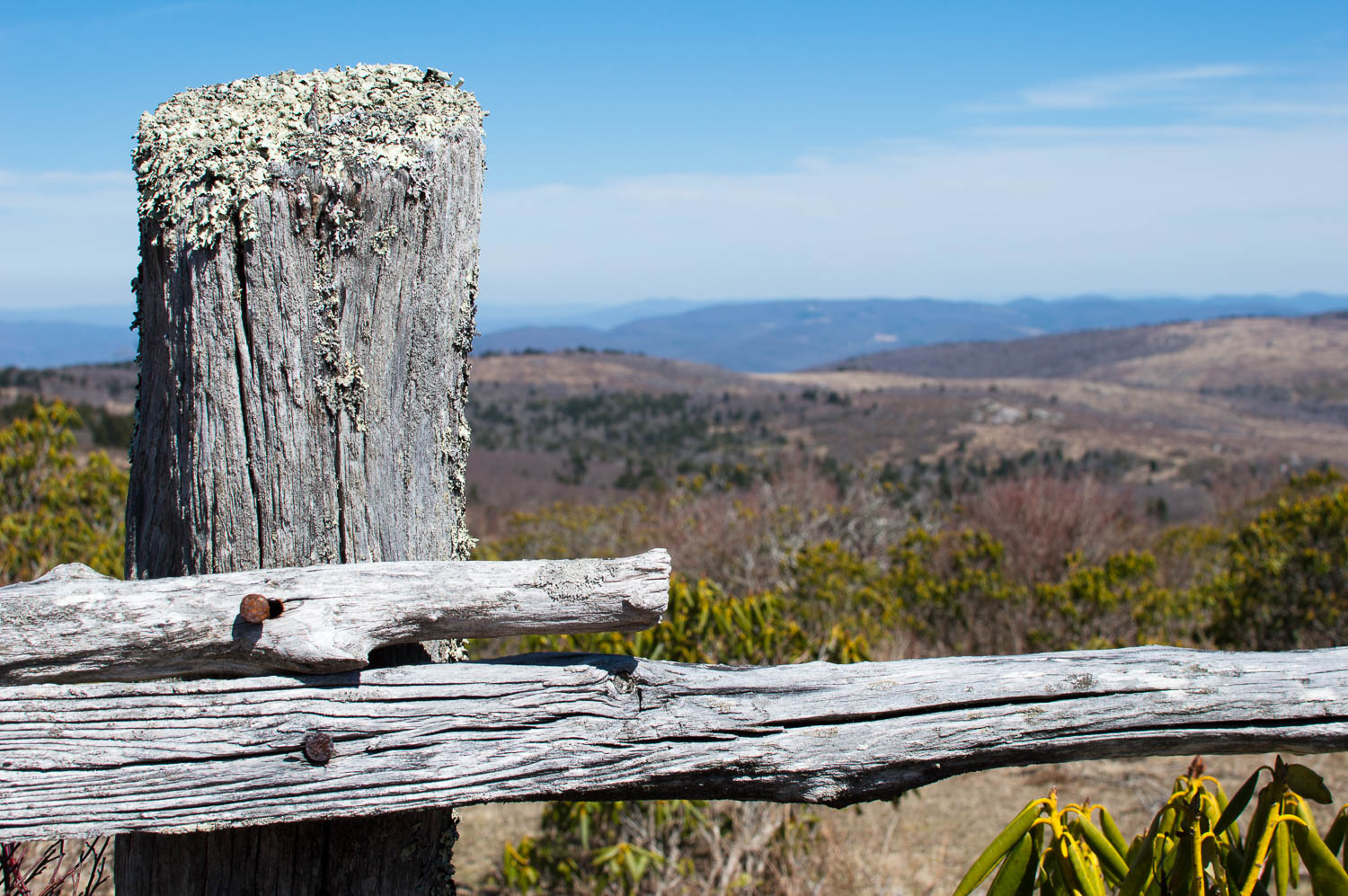 The call of the long distance trail - Grayson Highlands along the Appalachian Trail