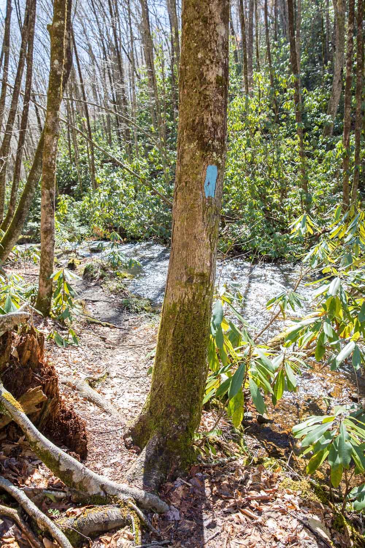 Kimsey Creek Trail