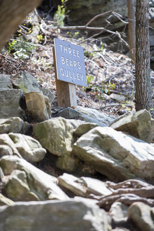 Three Bears Gulley - Climbing at Pilot Mountain