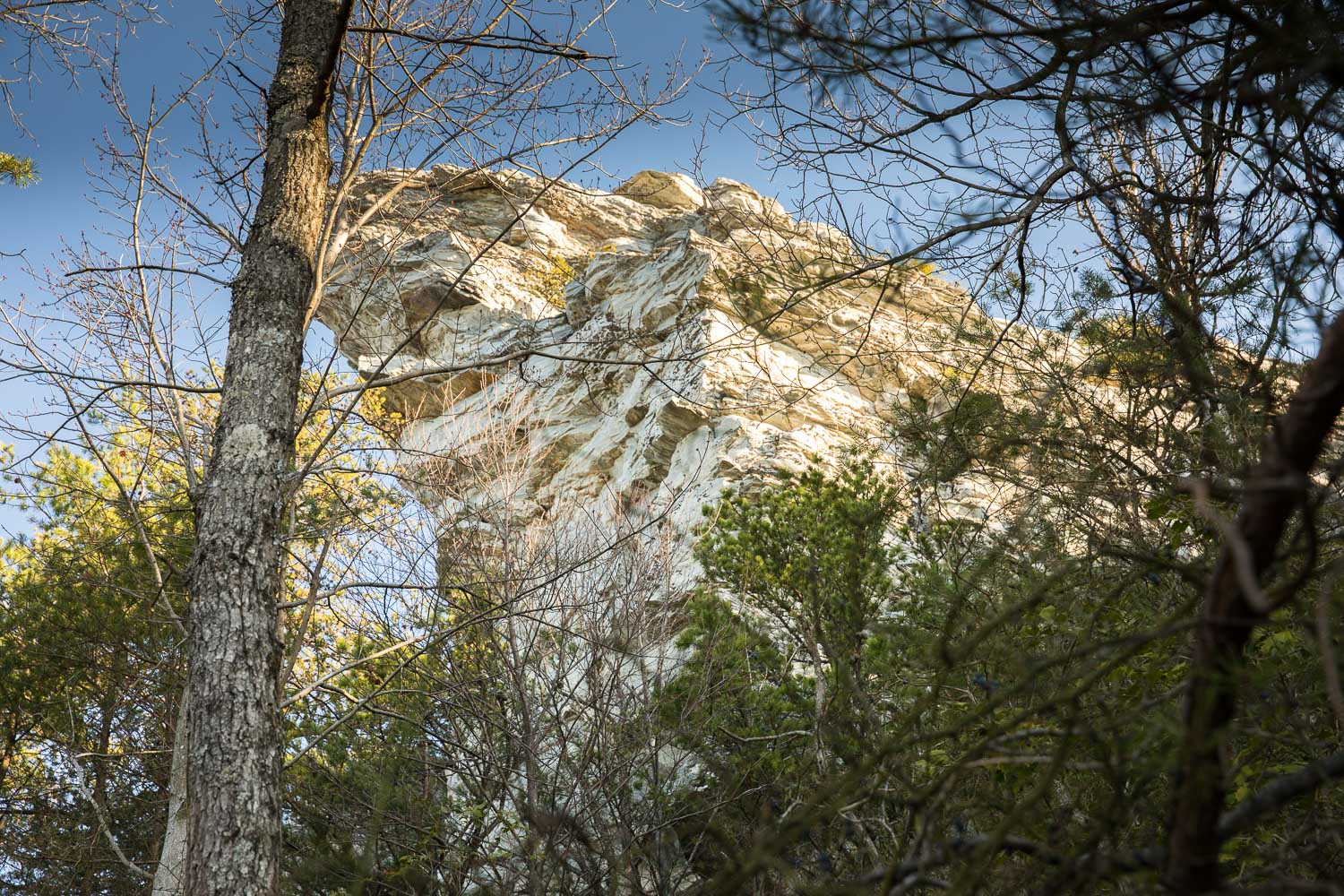 Look up, because that's where you're going to hike to.