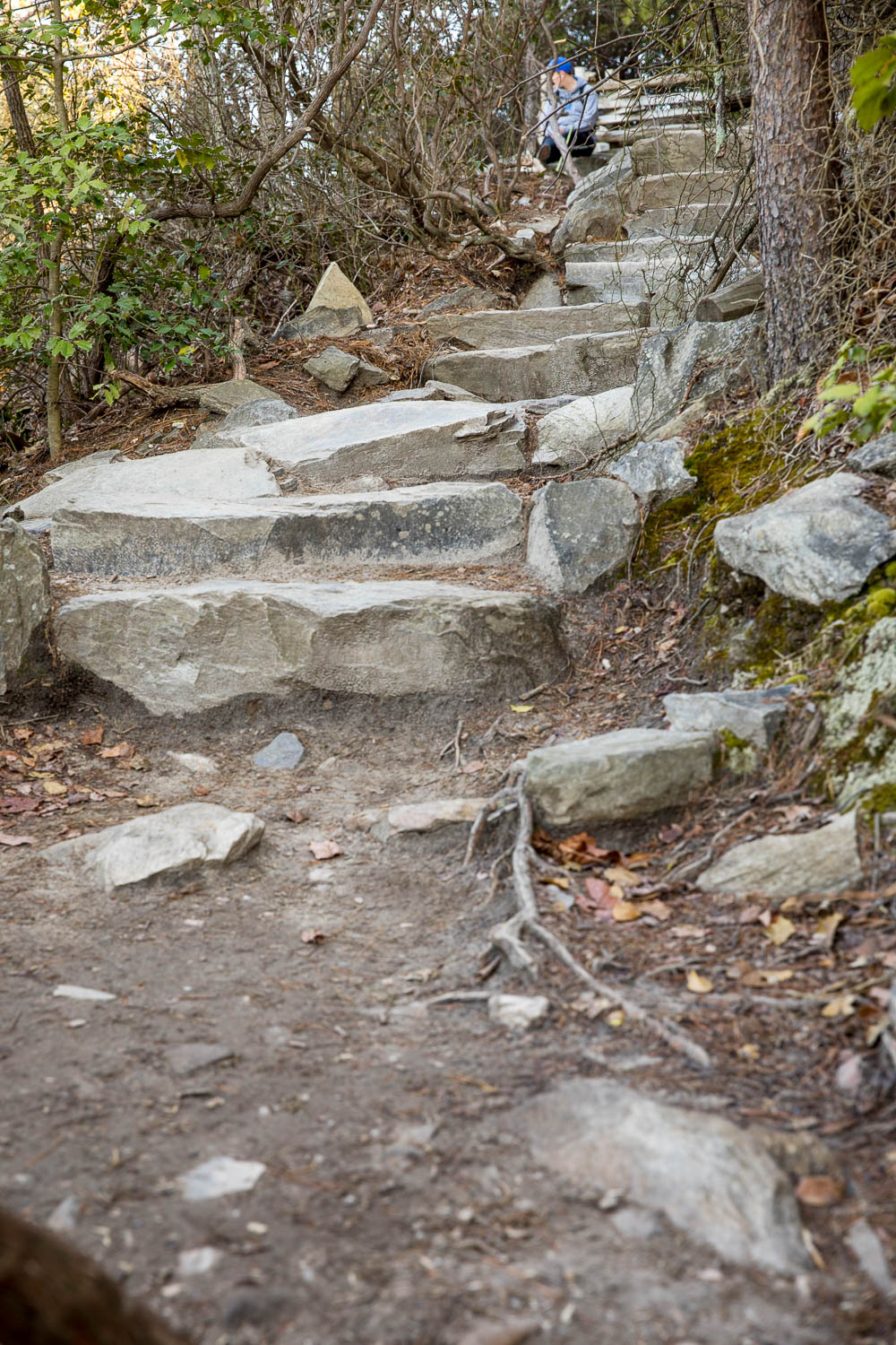 Just a sampling of stairs. These stairs up to the summit are no joke.