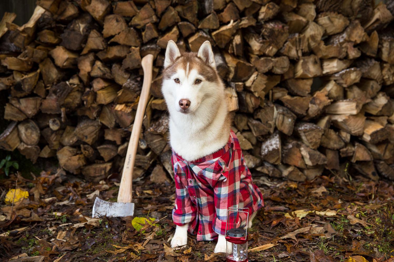 """""""I'm a lumberjack…"""""""