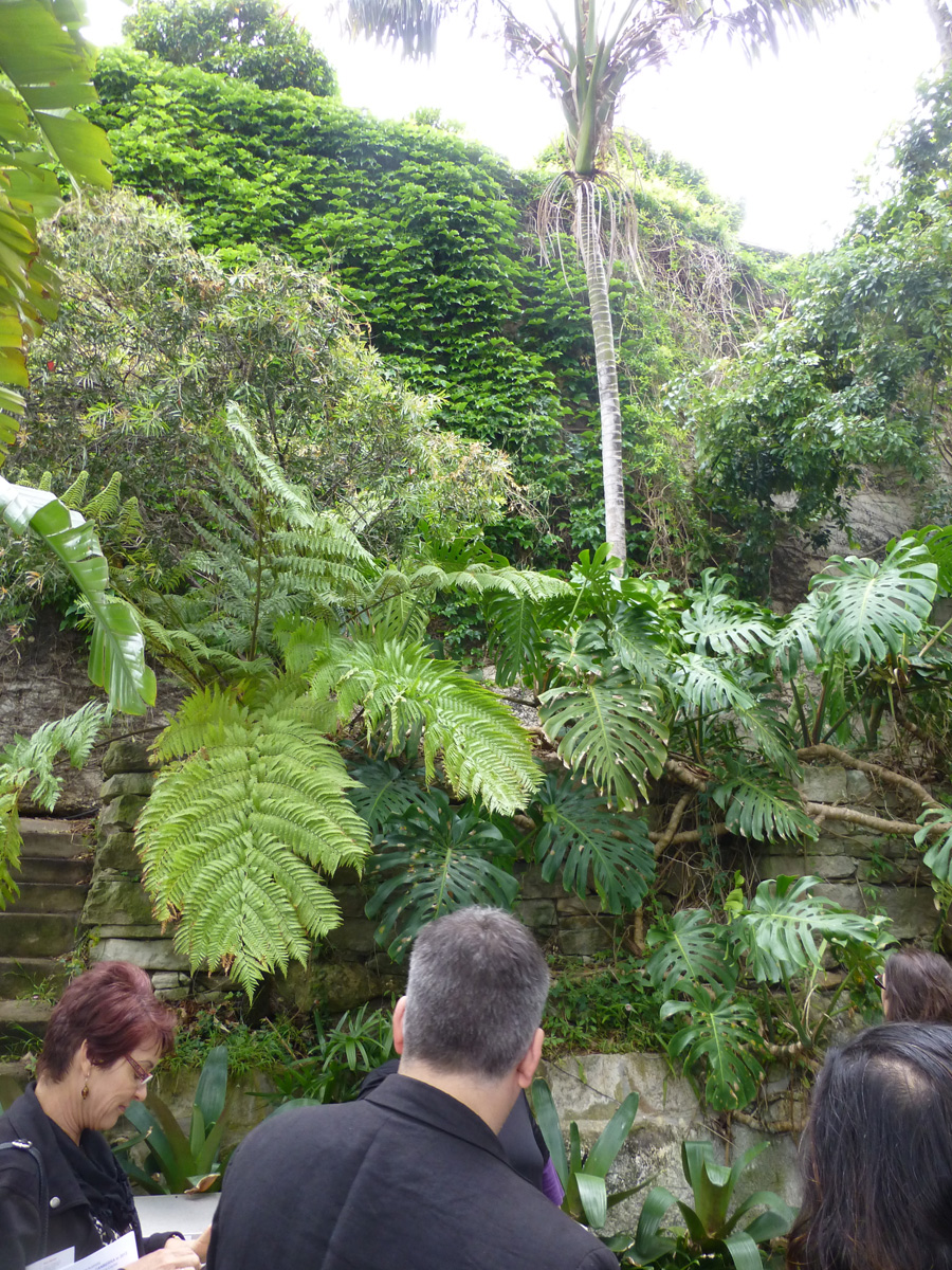 The rear of the house backed onto rock face which was planted up with large leafy rainforest plants to soften the surface.