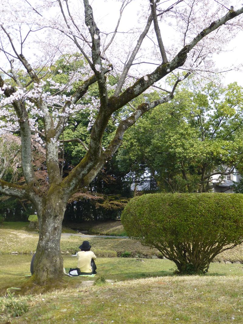 Tsuyama-garden-4.jpg