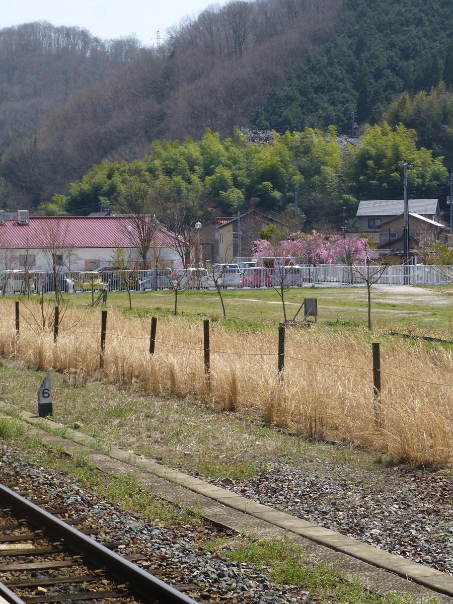Train-Tsuyama-Shinji-2.jpg