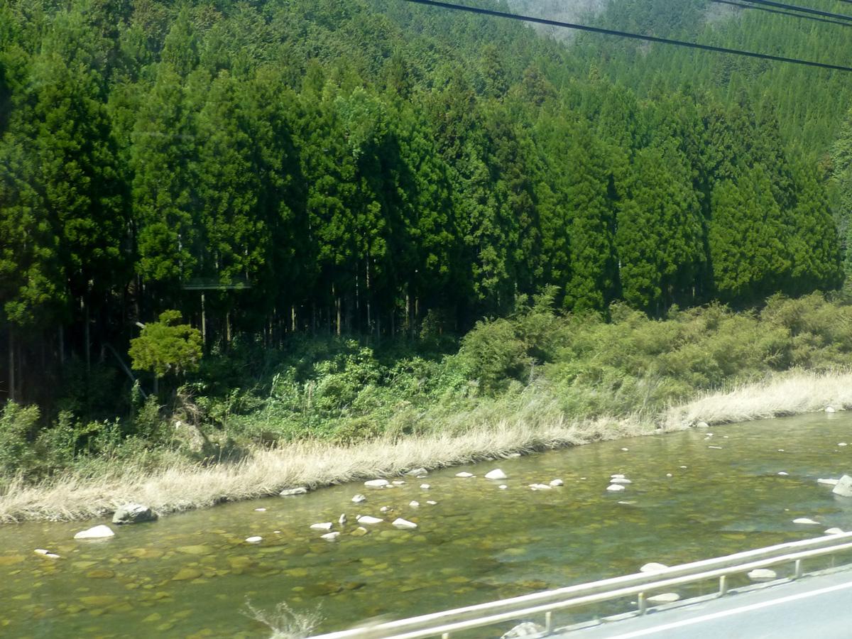 Train-Tsuyama-Shinji-4.jpg