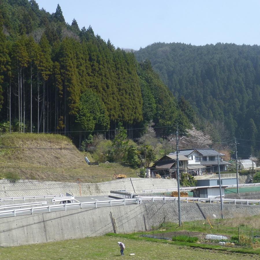 Train-Tsuyama-Shinji-7j.jpg