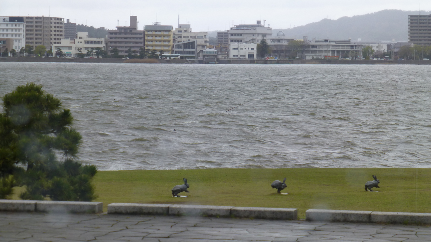 Rabbits bound across the lakeside forecourt of the Shimane Art Museum