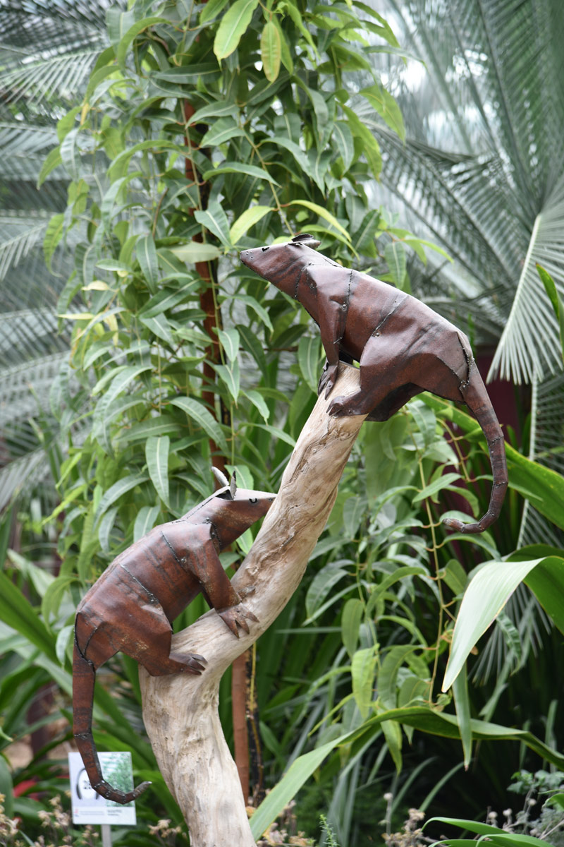 The flower dome at Gardens by the Bay was filled with interesting sculptural animals amidst everything.