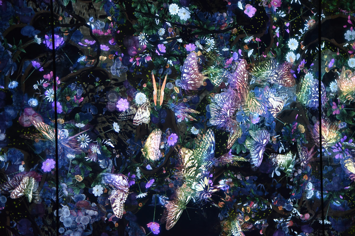 The beautiful digital butterfly dance and layers of nature motifs.