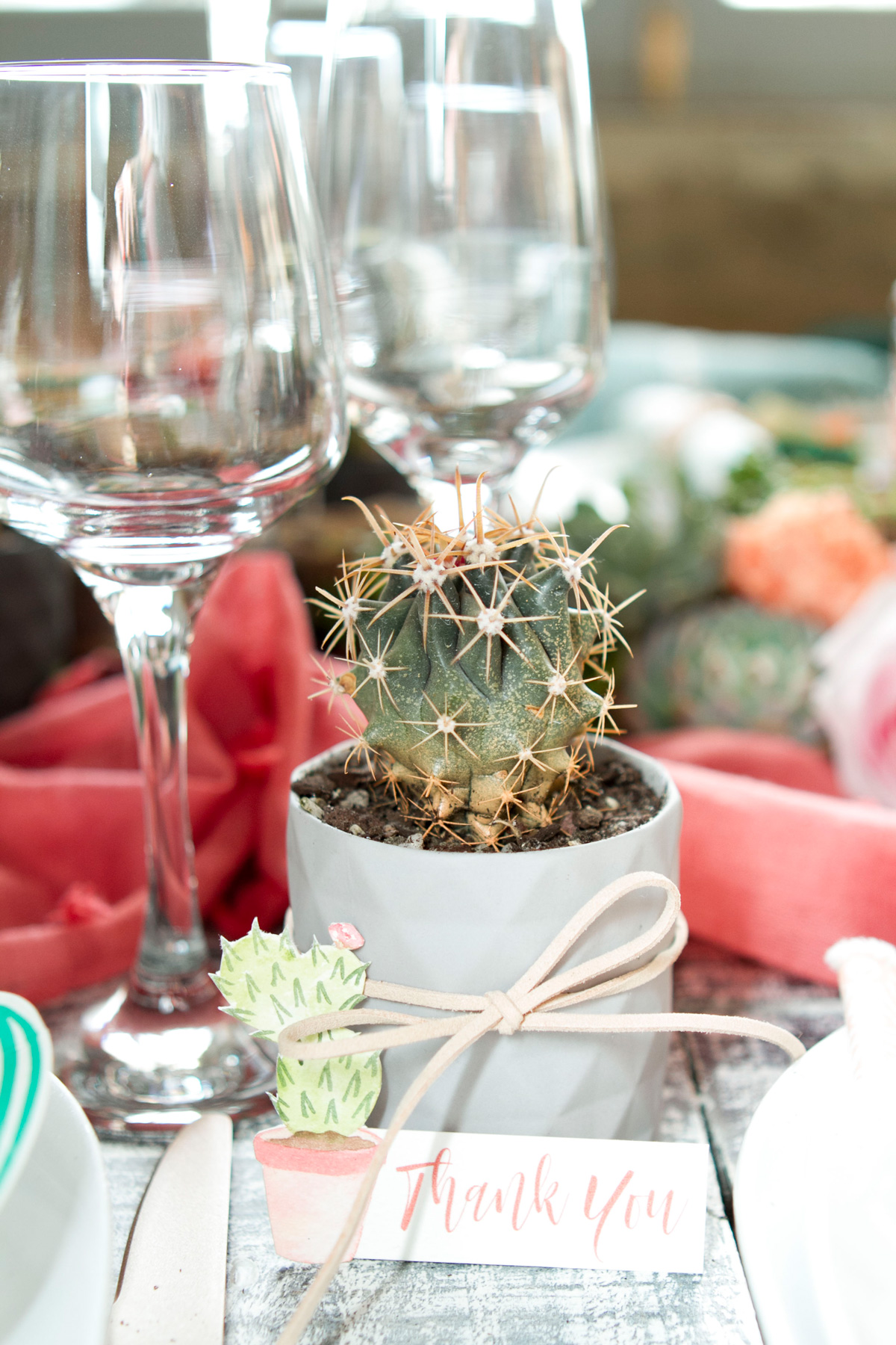 Cacti pots make a perfect gift for guests that add colour and texture during the event itself.