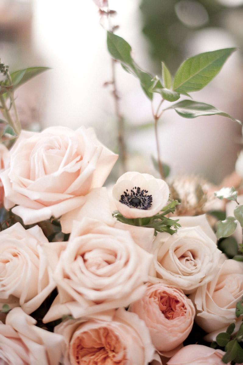 Botanical-In_Full_Bloom-013.jpg
