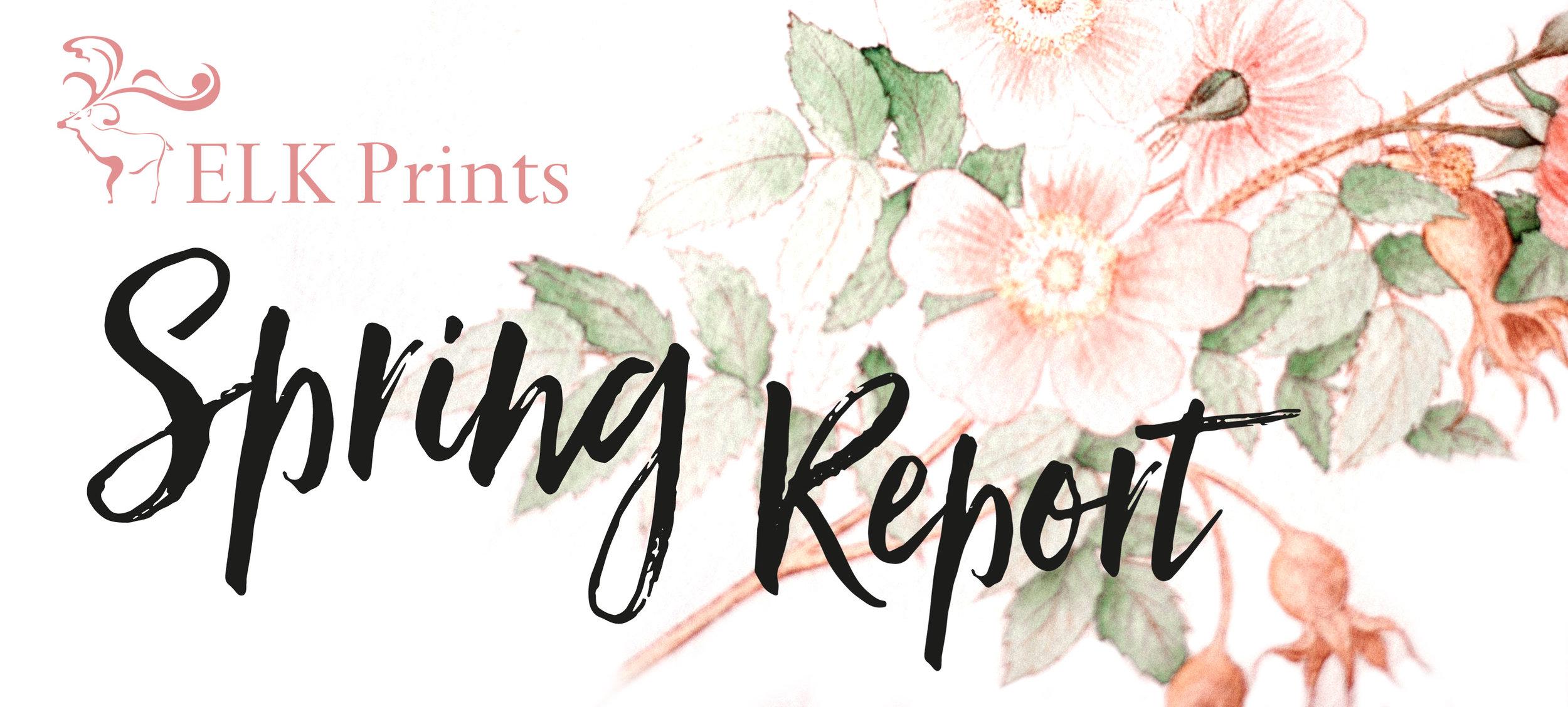 SpringReport-V1.jpg