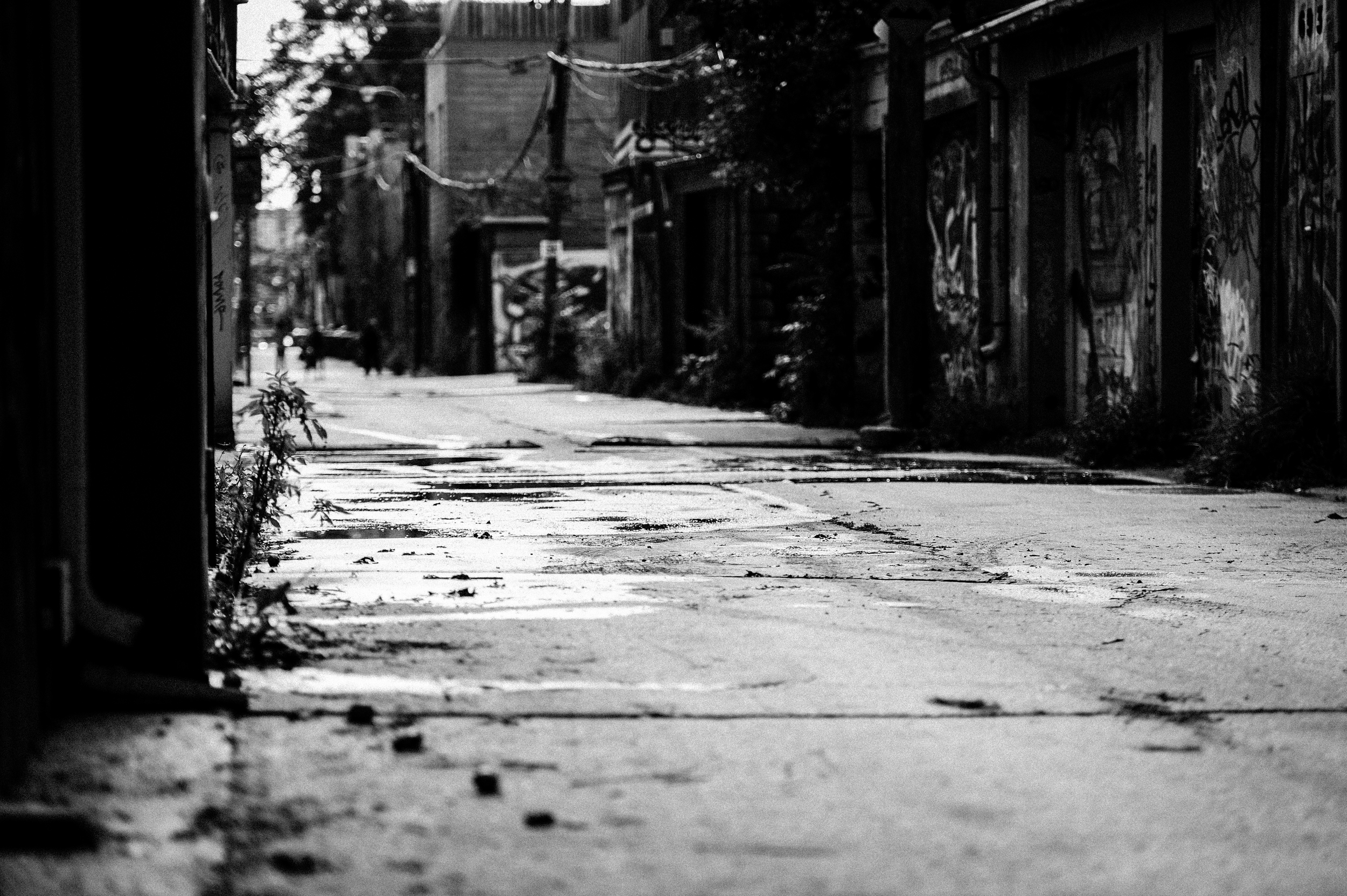 City Street-51.jpg