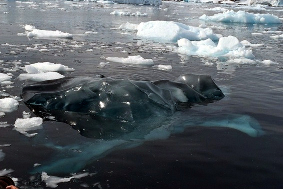 Black Ice in thePeninsula (photo by another geocache adventurer Dave McCullough)