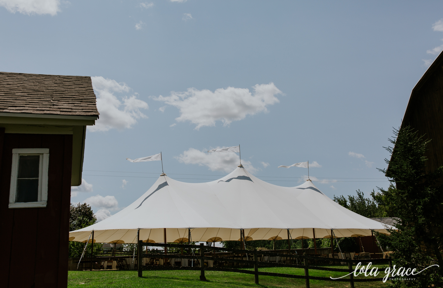 summer-wedding-at-misty-farms-ann-arbor-18.jpg