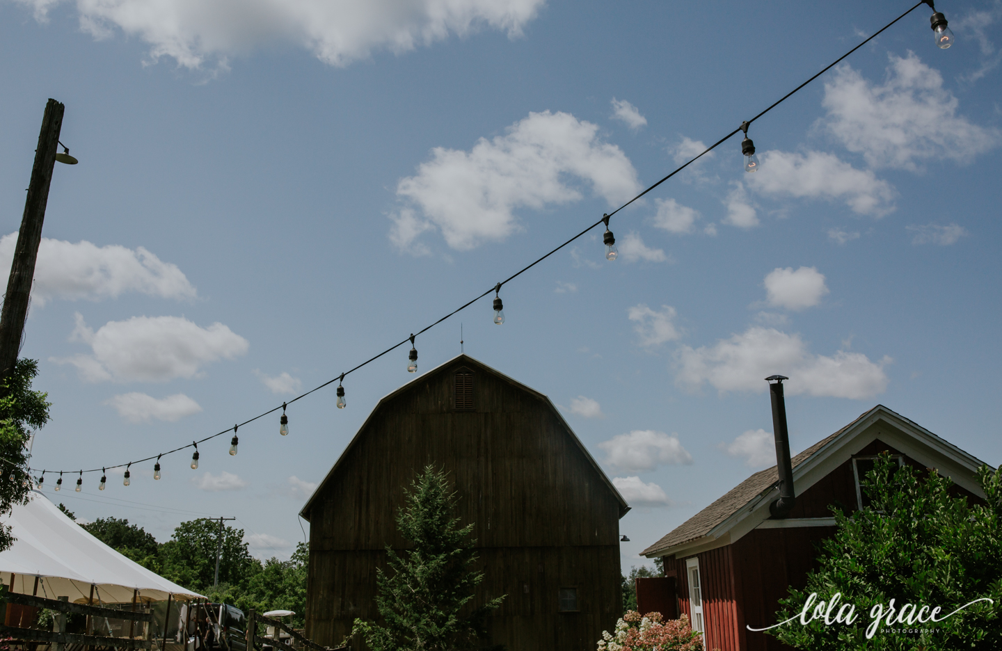 summer-wedding-at-misty-farms-ann-arbor-25.jpg