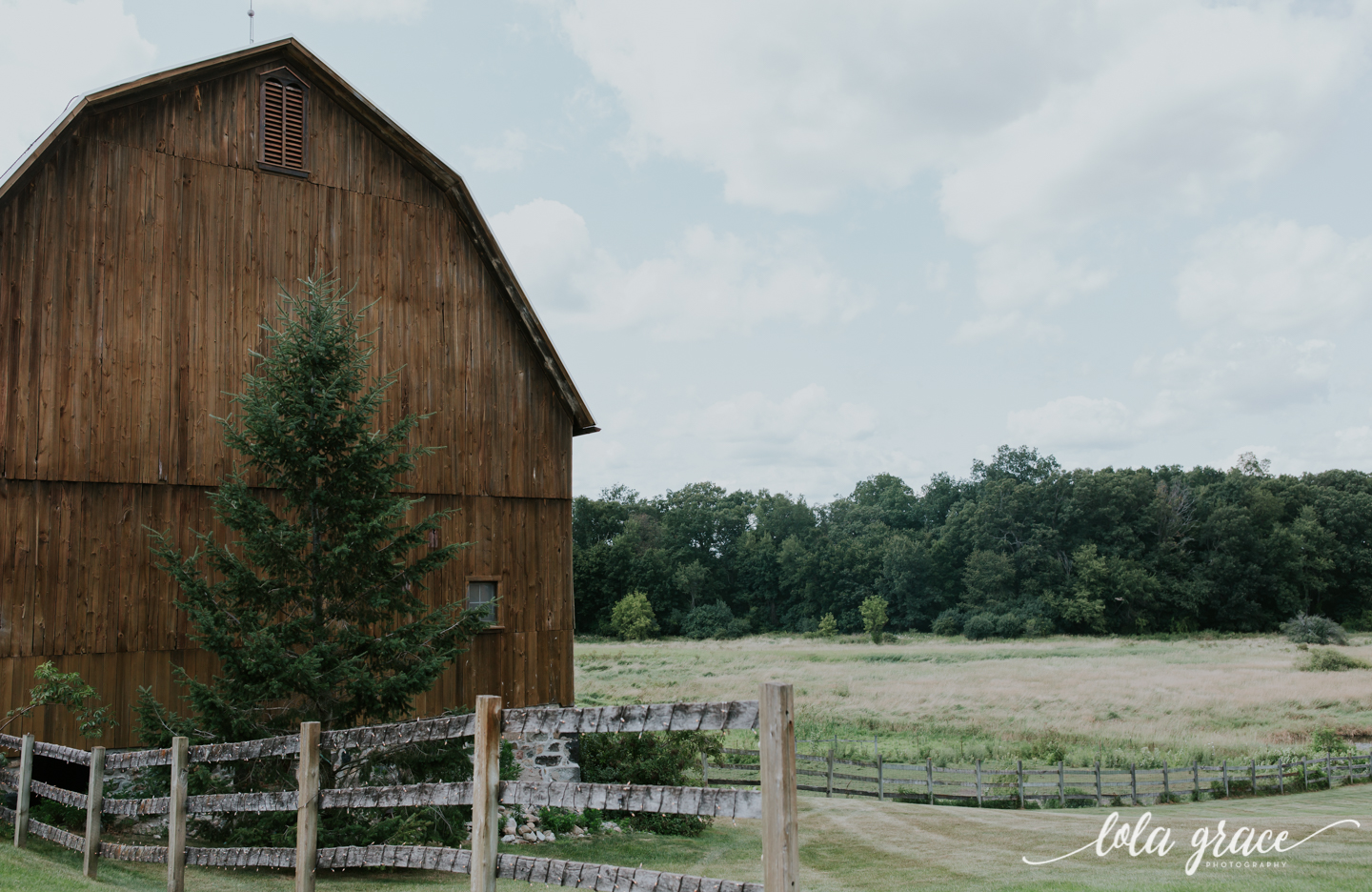 summer-wedding-at-misty-farms-ann-arbor-43.jpg