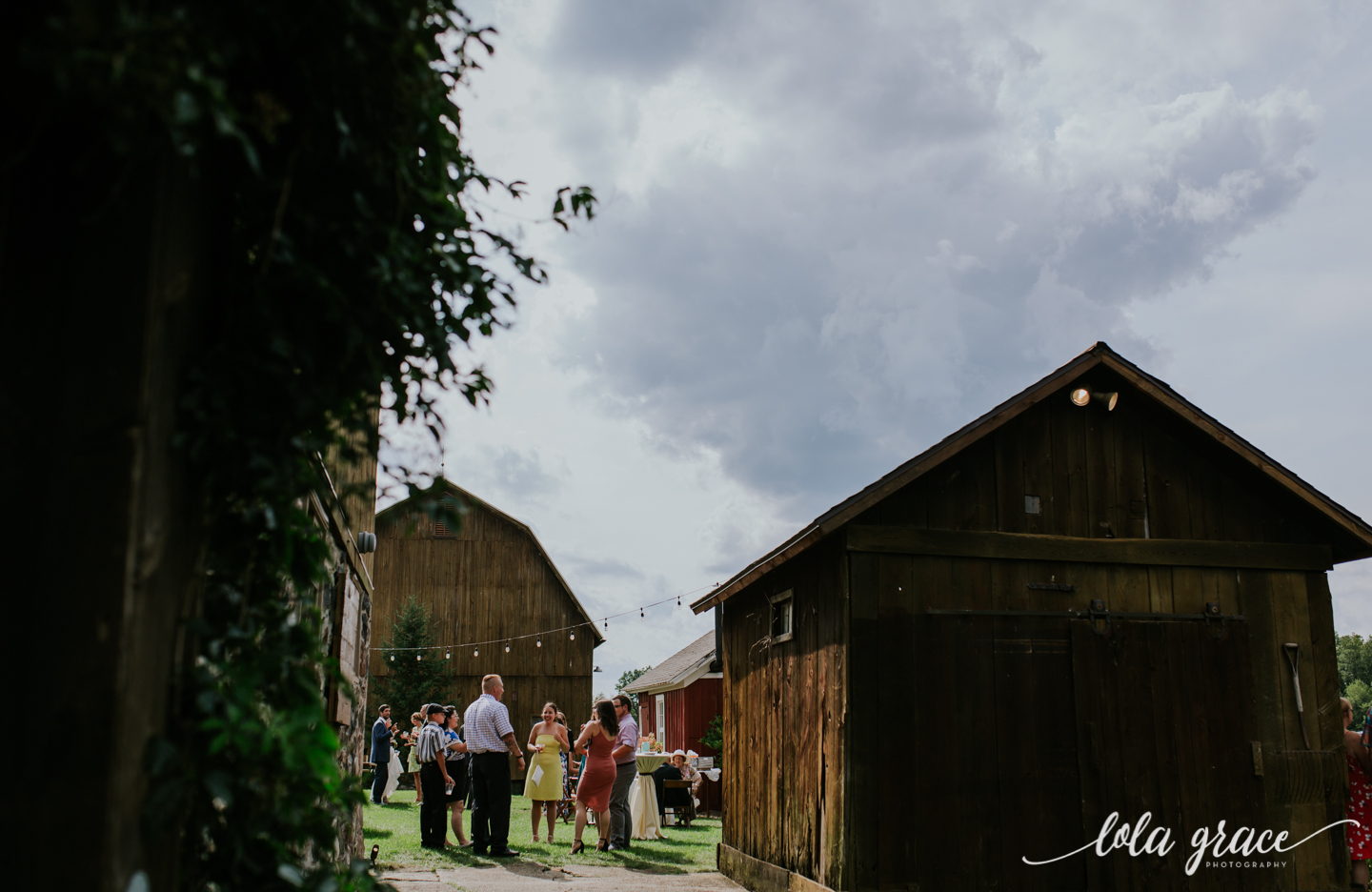 summer-wedding-at-misty-farms-ann-arbor-83.jpg