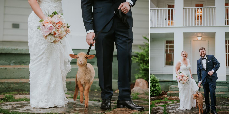 lola-grace-photography-cornman-farms-summer-wedding-63.jpg
