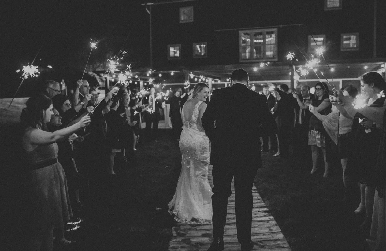 lola-grace-photography-cornman-farms-summer-wedding-90.jpg