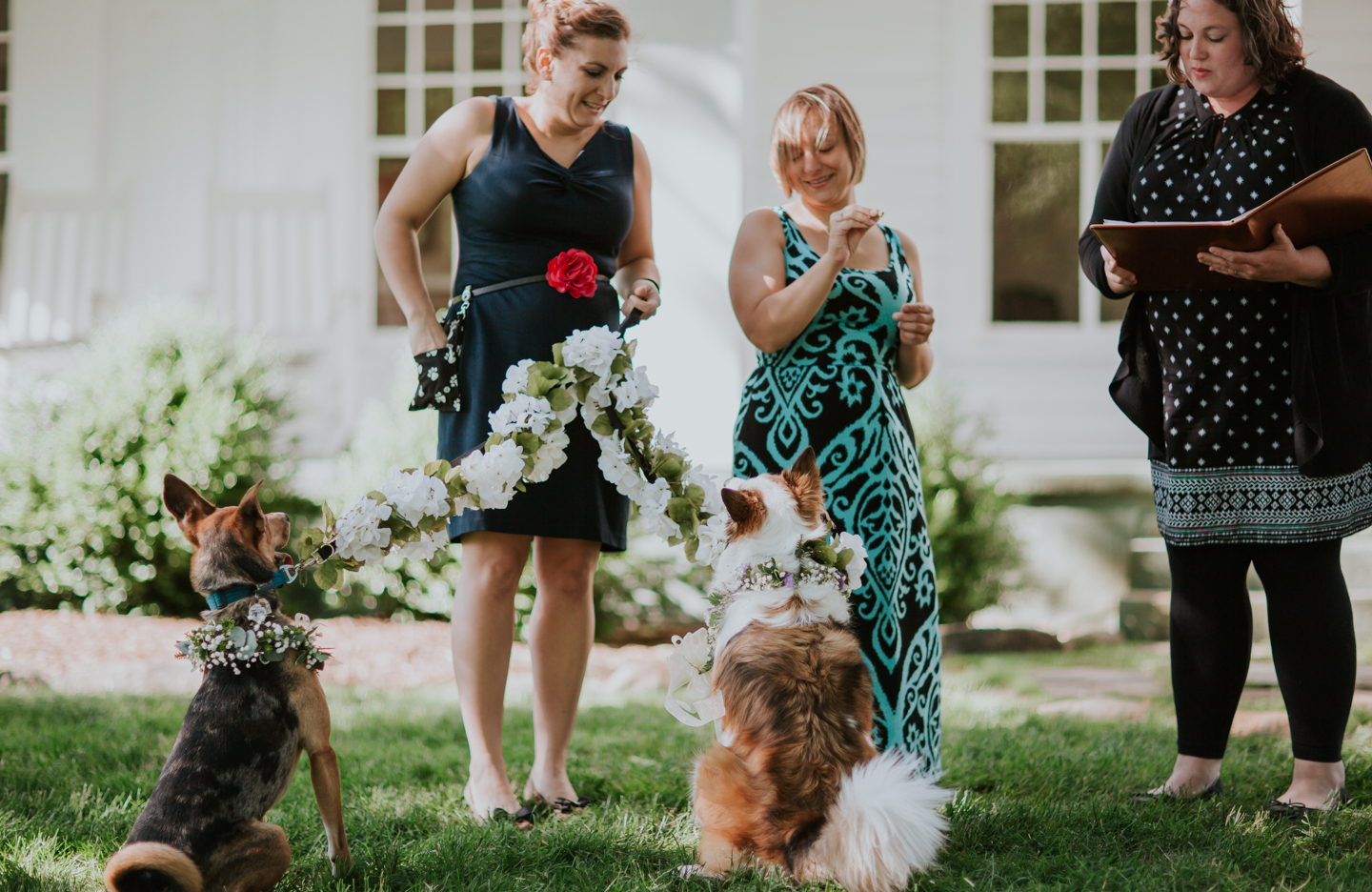 lola-grace-photography-dog-intimate-wedding-16.jpg