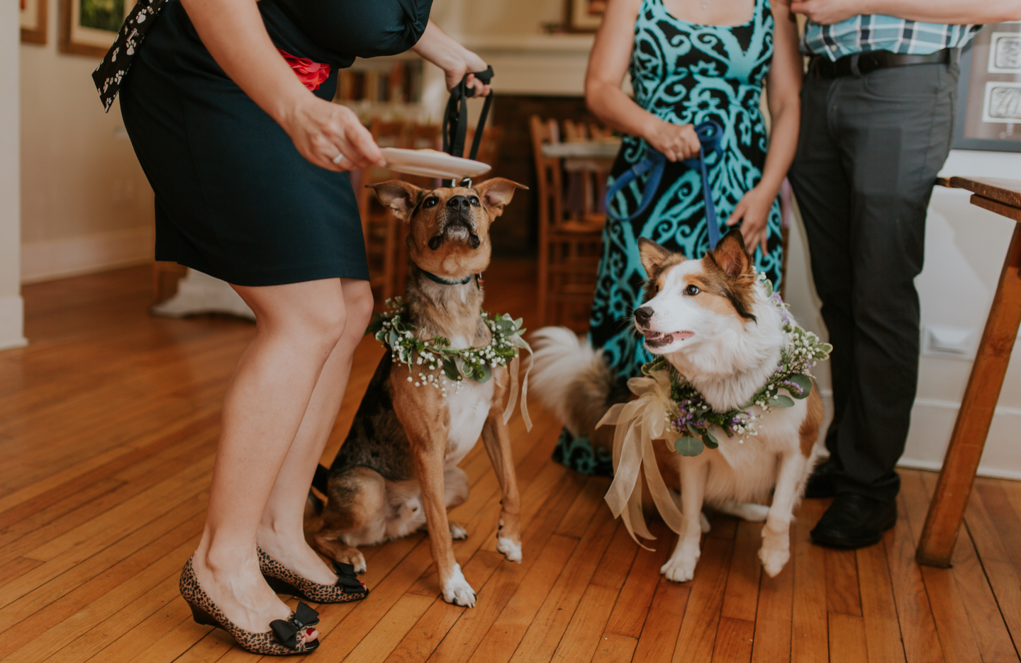 lola-grace-photography-dog-intimate-wedding-25.jpg