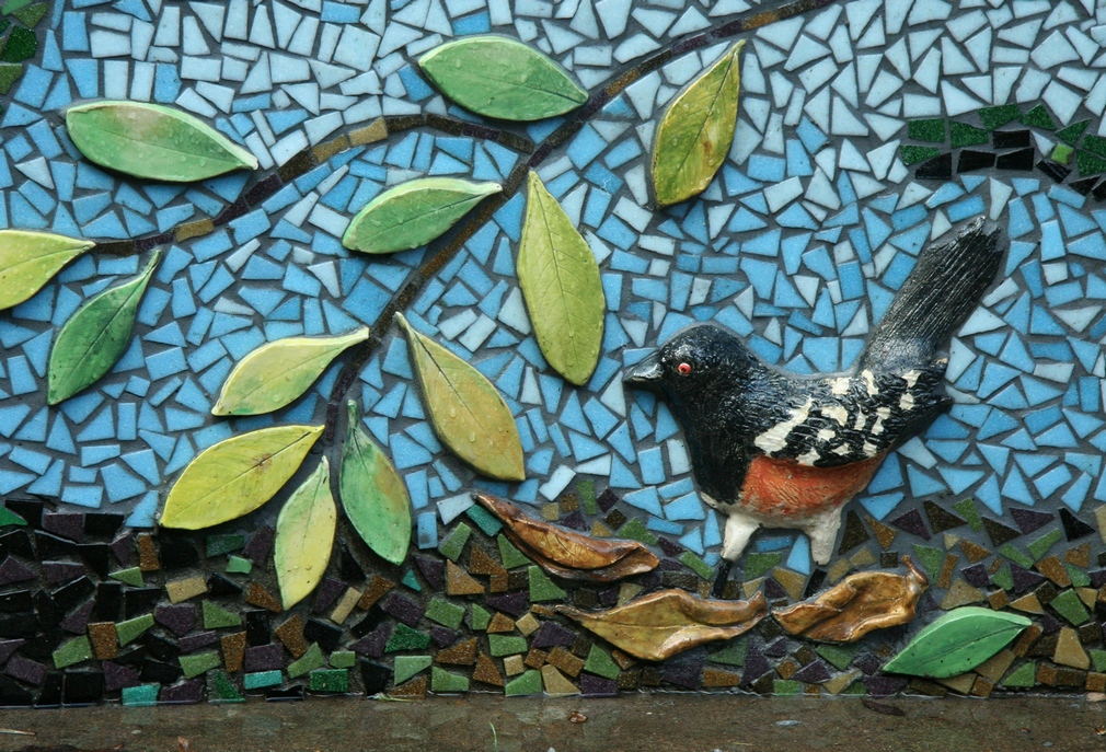 spotted towhee and indian plum mosaic
