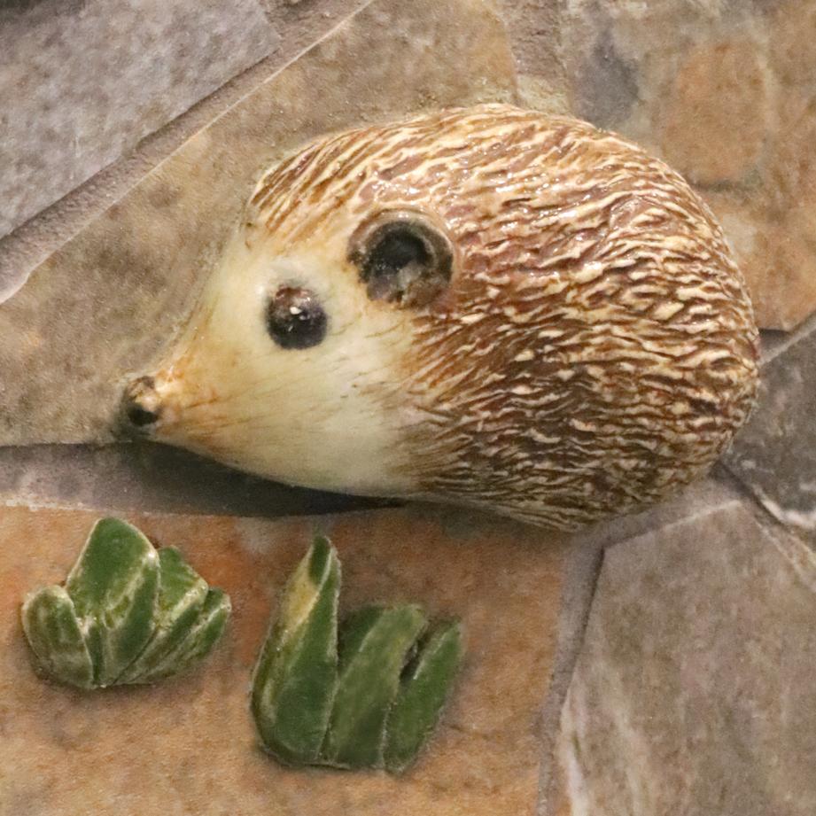 UMMCH hedgehog lr.png