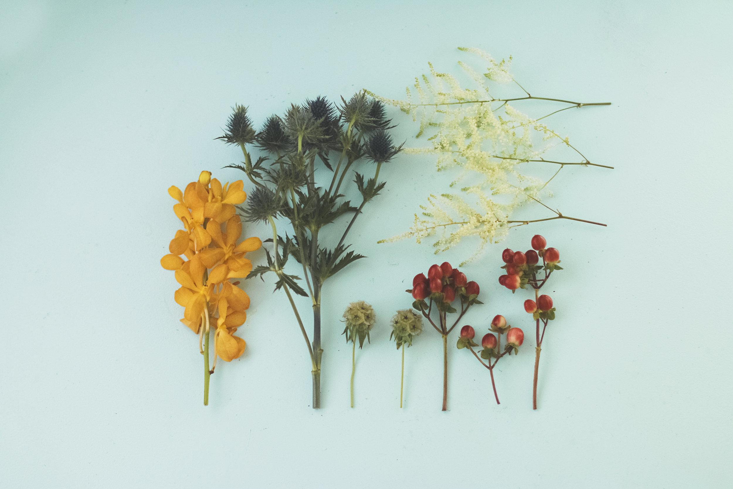 angie-diaz-photography-diy-flower-crown-tutorial-04.jpg