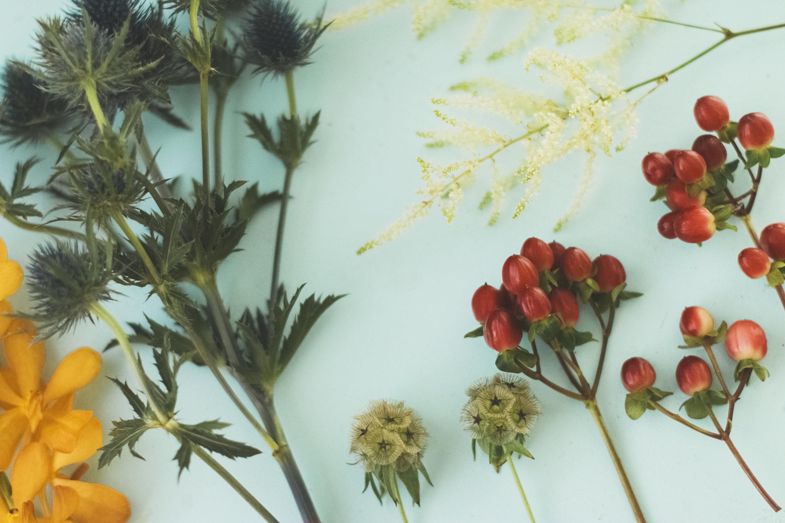 angie-diaz-photography-diy-flower-crown-tutorial-07.jpg