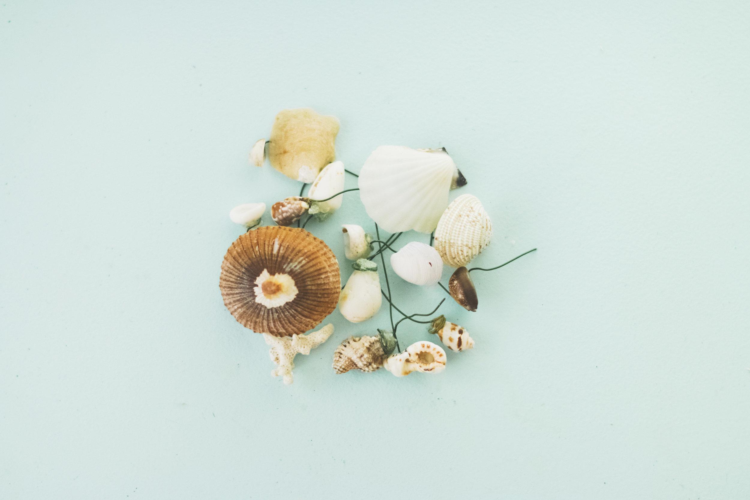 angie-diaz-photography-diy-flower-crown-tutorial-08.jpg