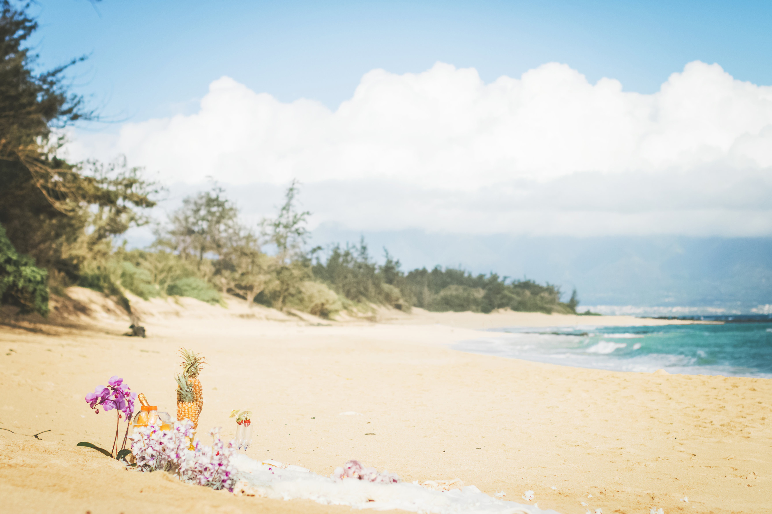 angie-diaz-photography-maui-proposal-baldwin-beach-aimee-tyler-7.jpg