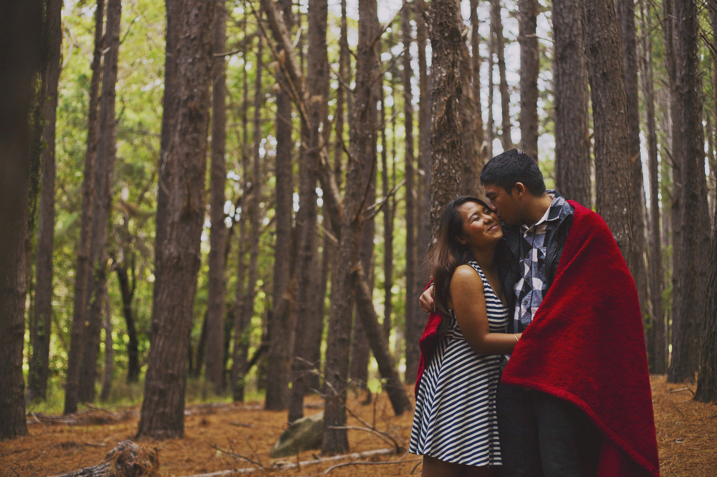 angie-diaz-photography-maui-upcountry-engagement-21.jpg