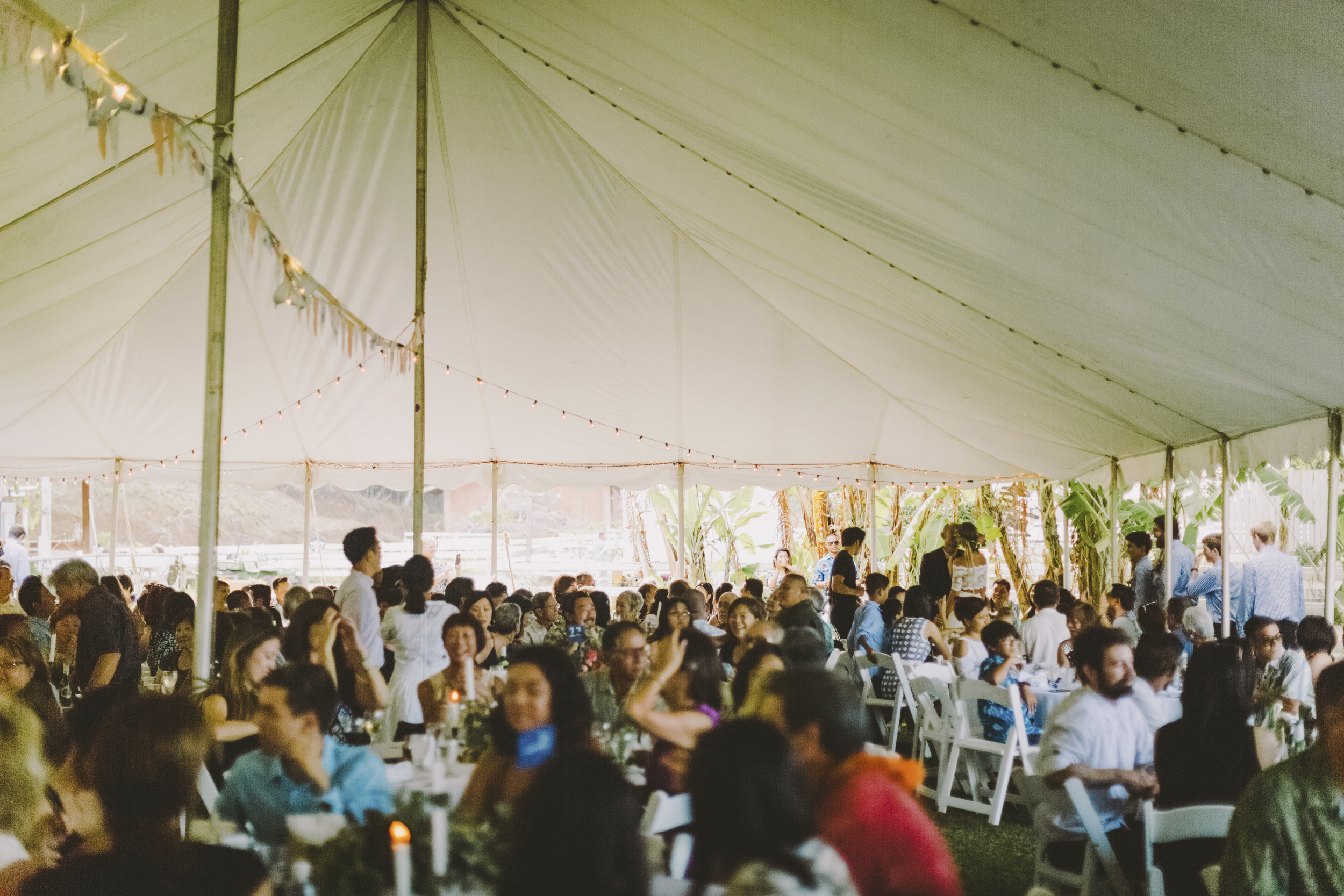 angie-diaz-photography-oahu-hawaii-wedding-tradewinds-ranch-101.jpg
