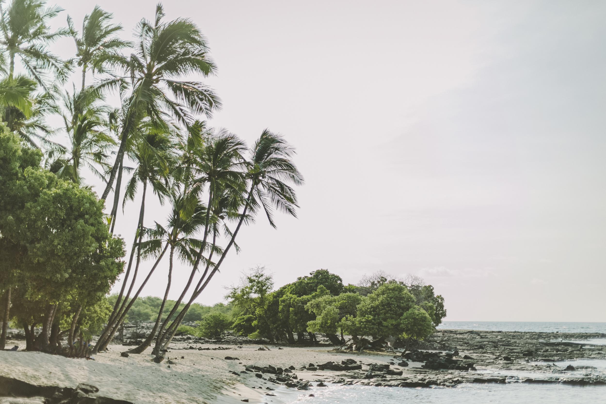 angie-diaz-photography-hawaii-wedding-photographer-kelli-jay-22.jpg