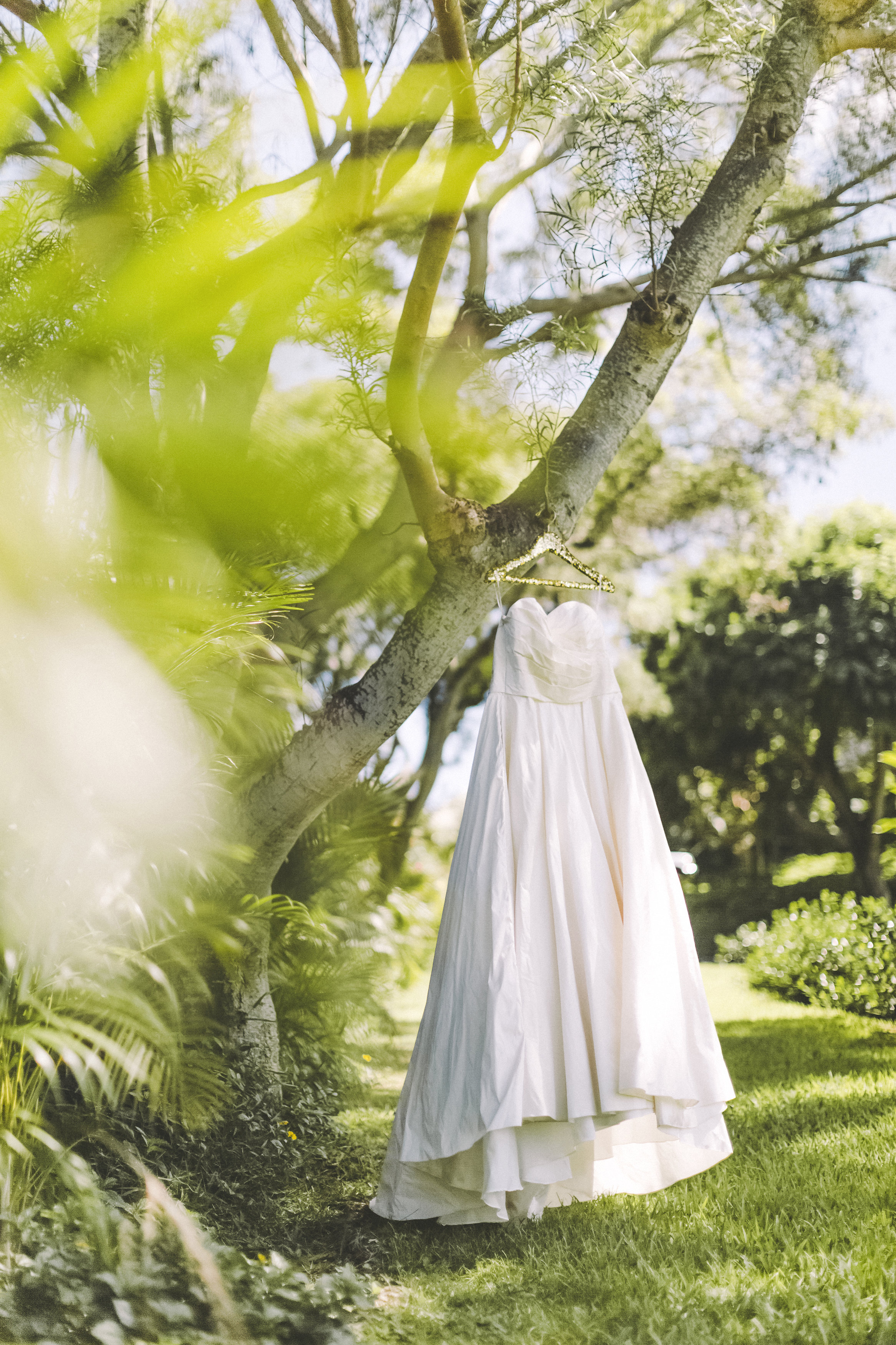 angie-diaz-photography-maui-elopement-1.jpg