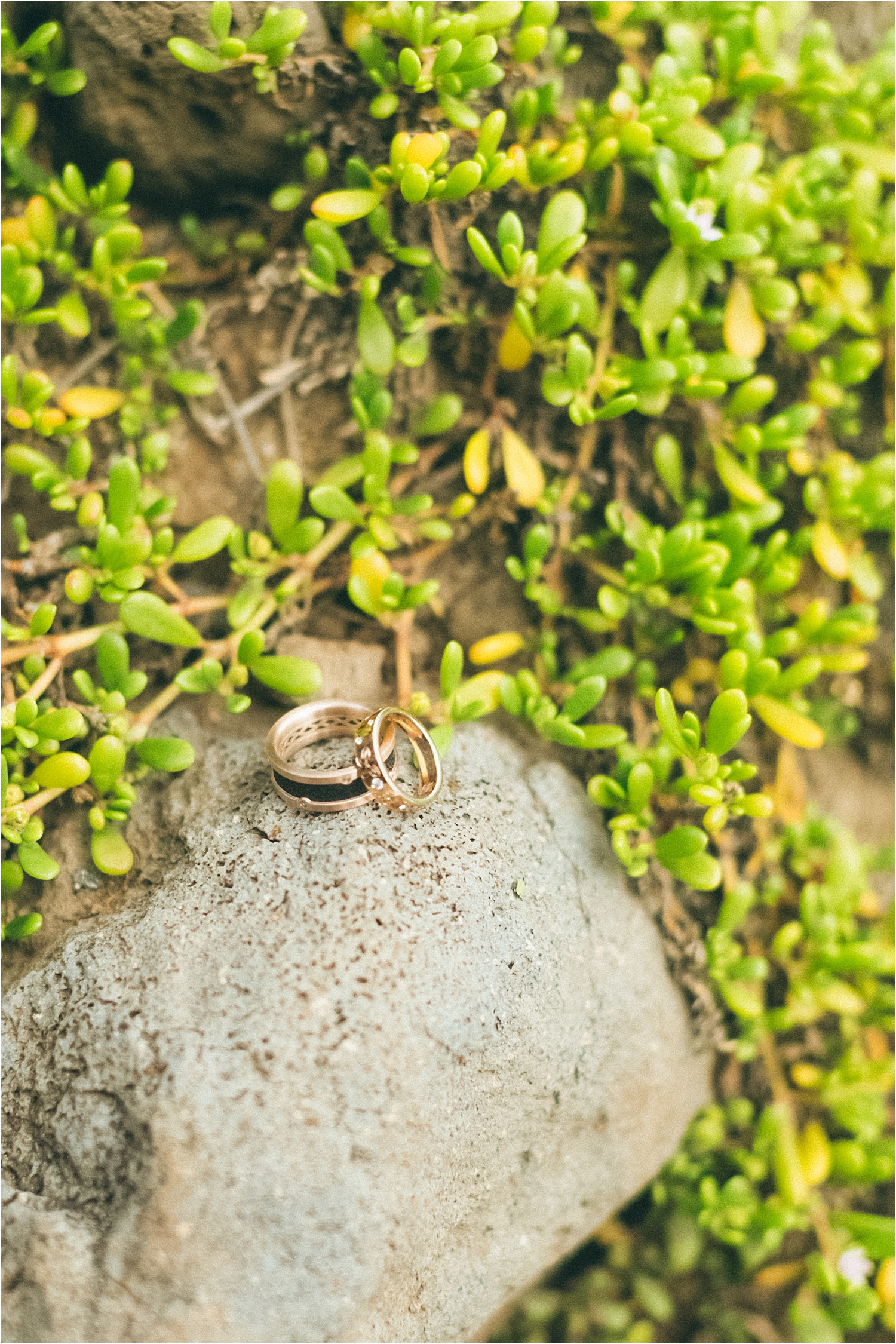 angie-diaz-photography-nakalele-blowhole-maui-wedding-day-after_0028.jpg
