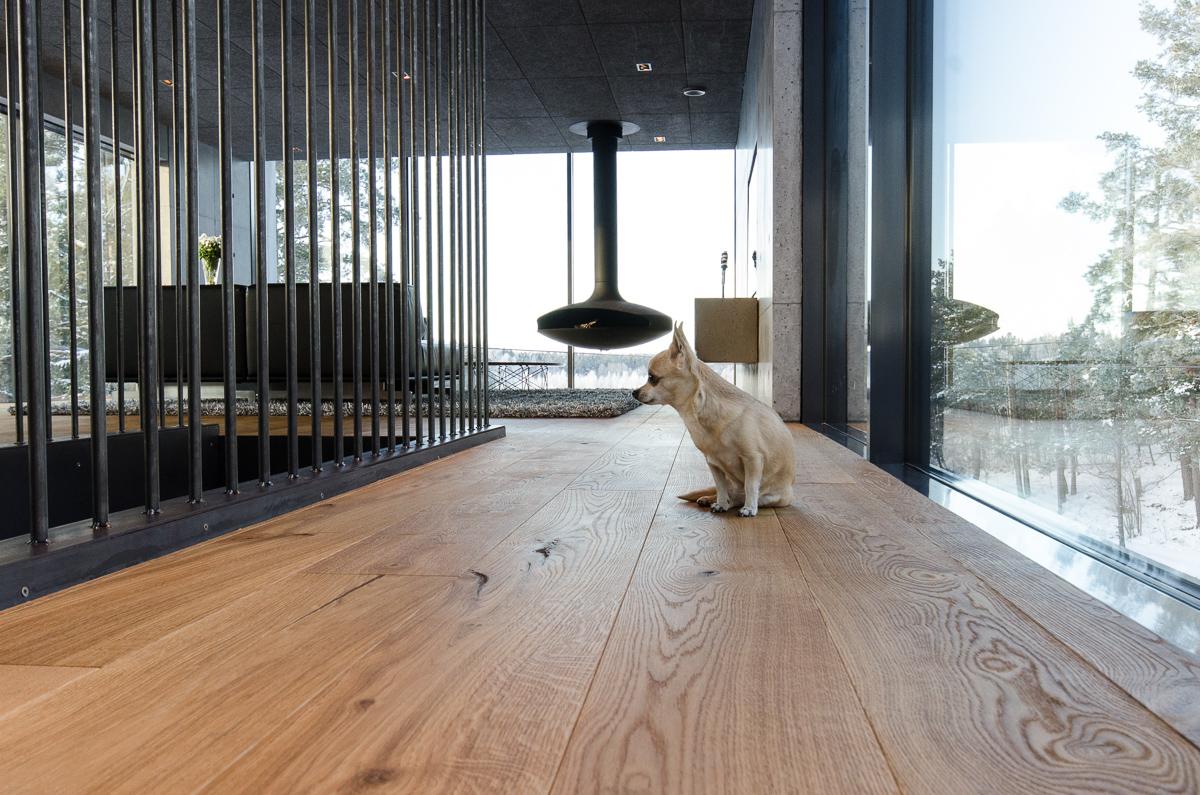 Concrete house resident