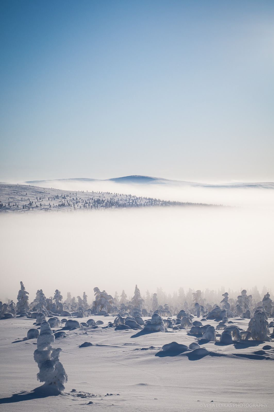 'Morning Fog'
