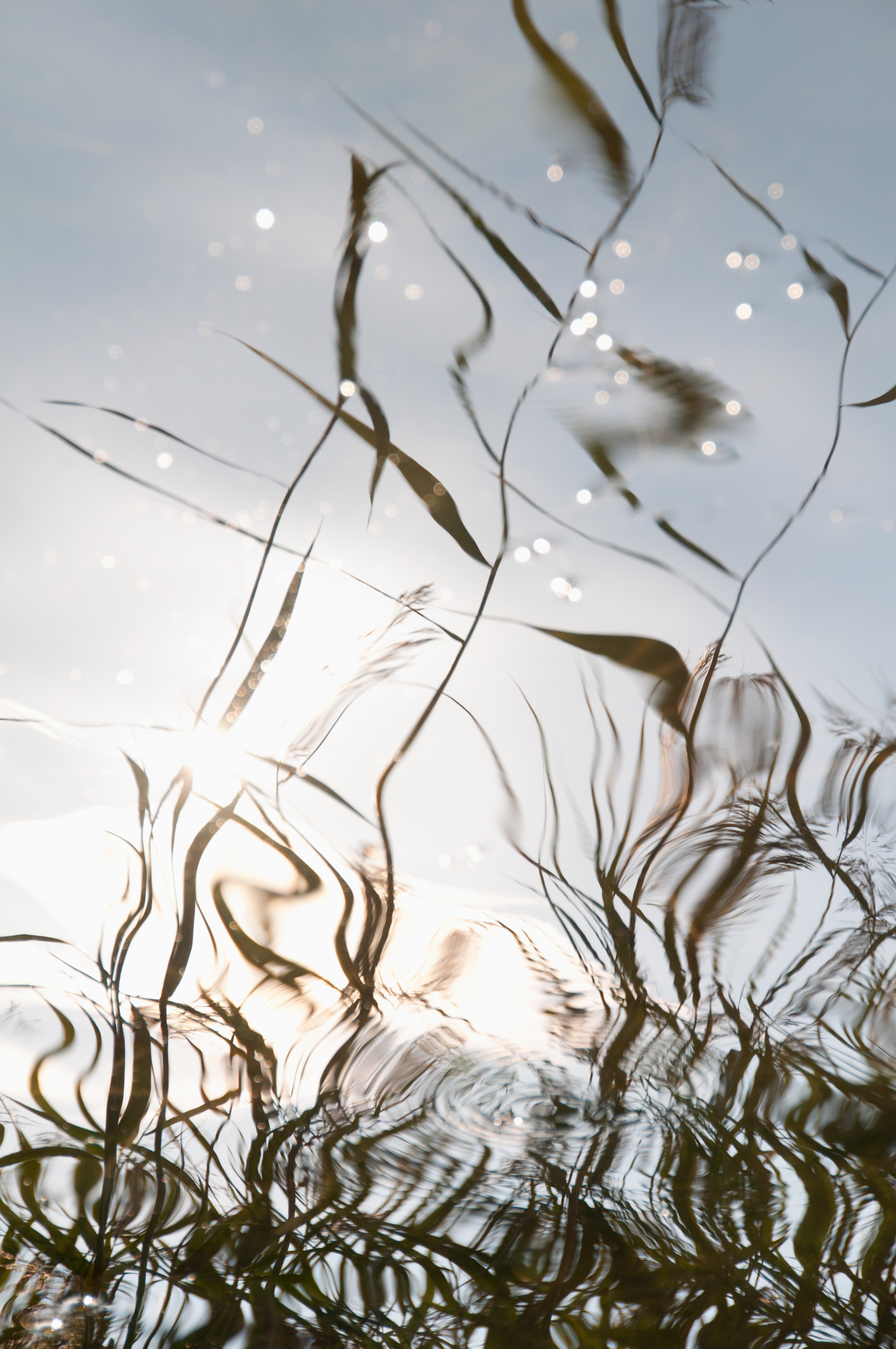 REFLECTIONS, NAUVO ARCHIPELAGO,FINLAND  Licensed by  ELISA OYJ