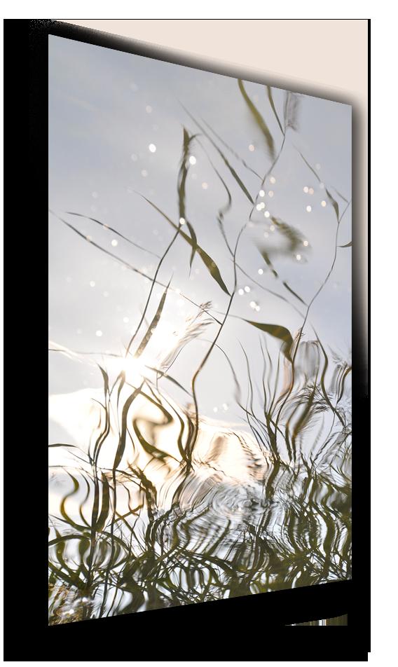 REFLECTIONS • Archipelago Series • Nauvo,FINLAND | Fine Art Photography
